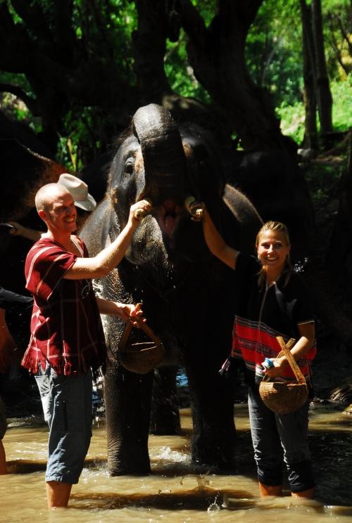 Vi vasker tennene til Bujan, Sara elefant